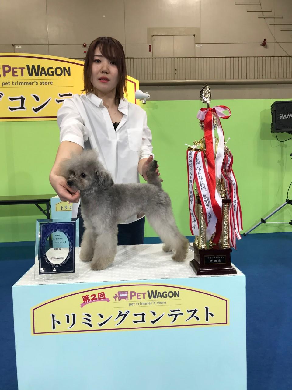 千葉そごう店黒田マネージャー2019年8月27日 第2回ペットワゴントリミングコンテスト クイックグルーミング3年以上部門 敢闘賞